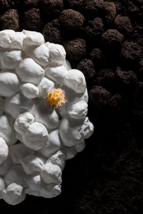 Steinbeisser Photography by Marion Luttenberger (MediumLarge Studio)